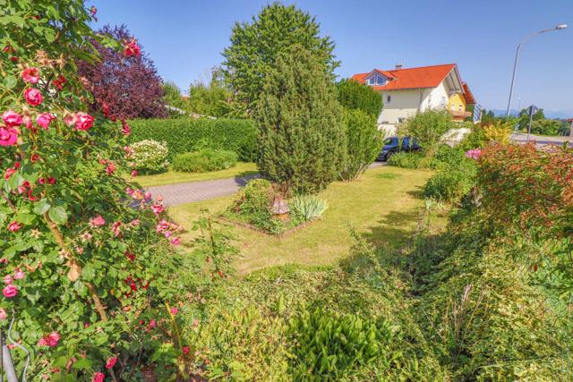 Einfahrt + Garten
